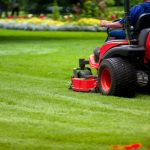 The Lawn Service Industry and it is Products Explored